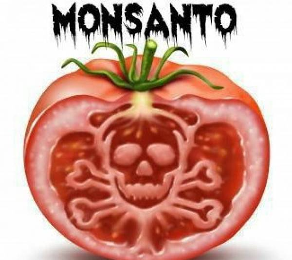 https://freewiseman.files.wordpress.com/2015/04/monsanto-evil-tomato.jpg?w=853