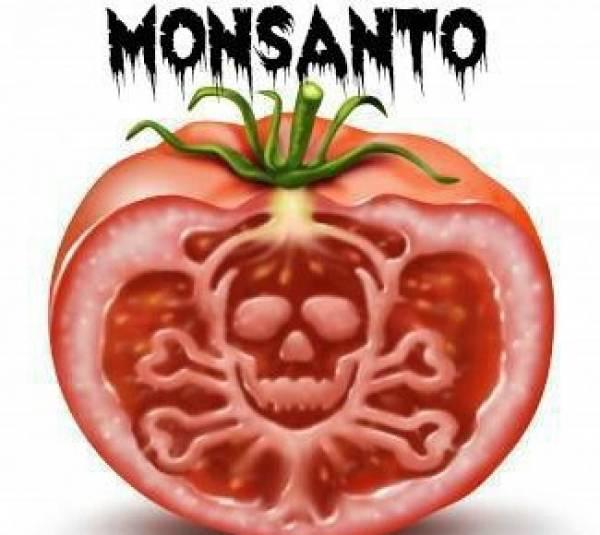 https://freewiseman.files.wordpress.com/2015/04/monsanto-evil-tomato.jpg?w=853